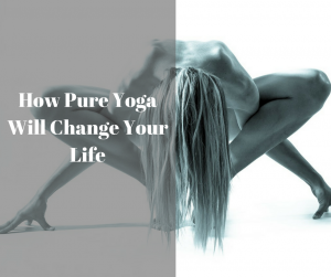 How Pure Yoga Will Change Your Life